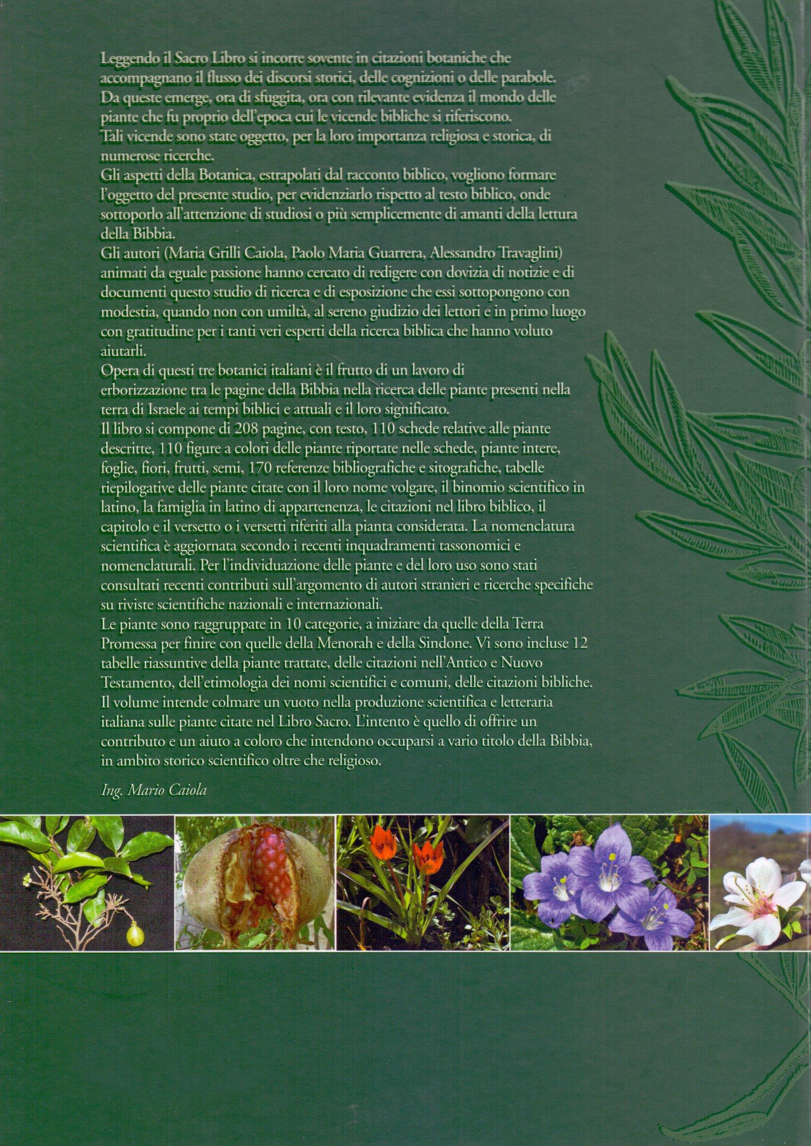Le piante nella Bibbia.